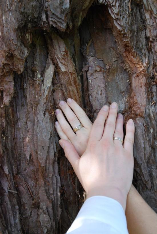 Equoia-de-naam700